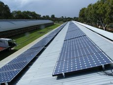 Chicken farm solar array