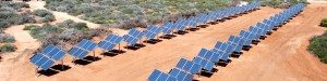 2 sets of 18 grids each planted on an open field for one of Solar Supplies' projects